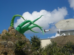 octopus attacks plane