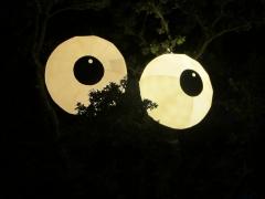 cock-eyed-night