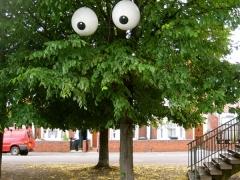m32_tree_closeup_sz