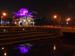 octo-taiwan-night-sz