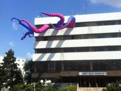 tentacle Liberte Egalite fraternite