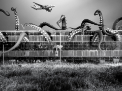 Philadelphia Navy Yard - USA Group X - 10m tentacles with suckers - Inflatable tentacles